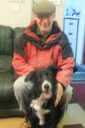 Olly the Collie going home xx