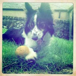 Raffa ( was Bryn about five years ago)